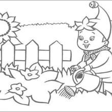 Dibujo para colorear : Noddy riega el jardín