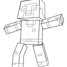 Dibujo para colorear : Minecraft : un homme