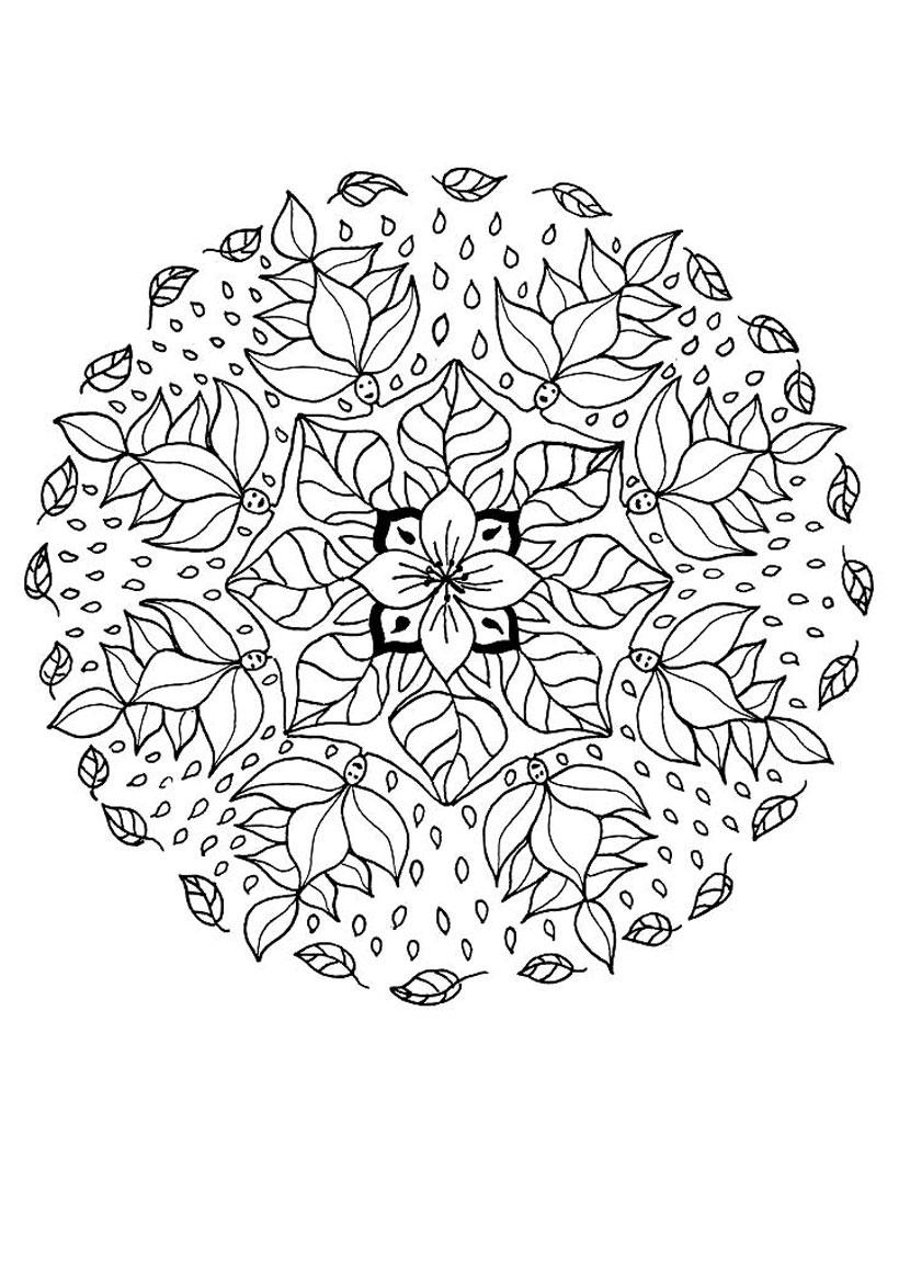 Dibujo para colorear : Mandala de la flor del duende