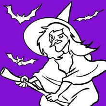 Vuelo de bruja y murciélagos