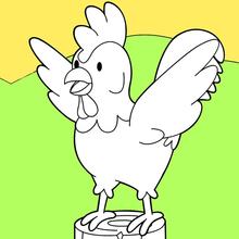 Dibujo para colorear : Gallo en los albores
