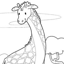 Dibujo para colorear : Jirafa cerca de un lago
