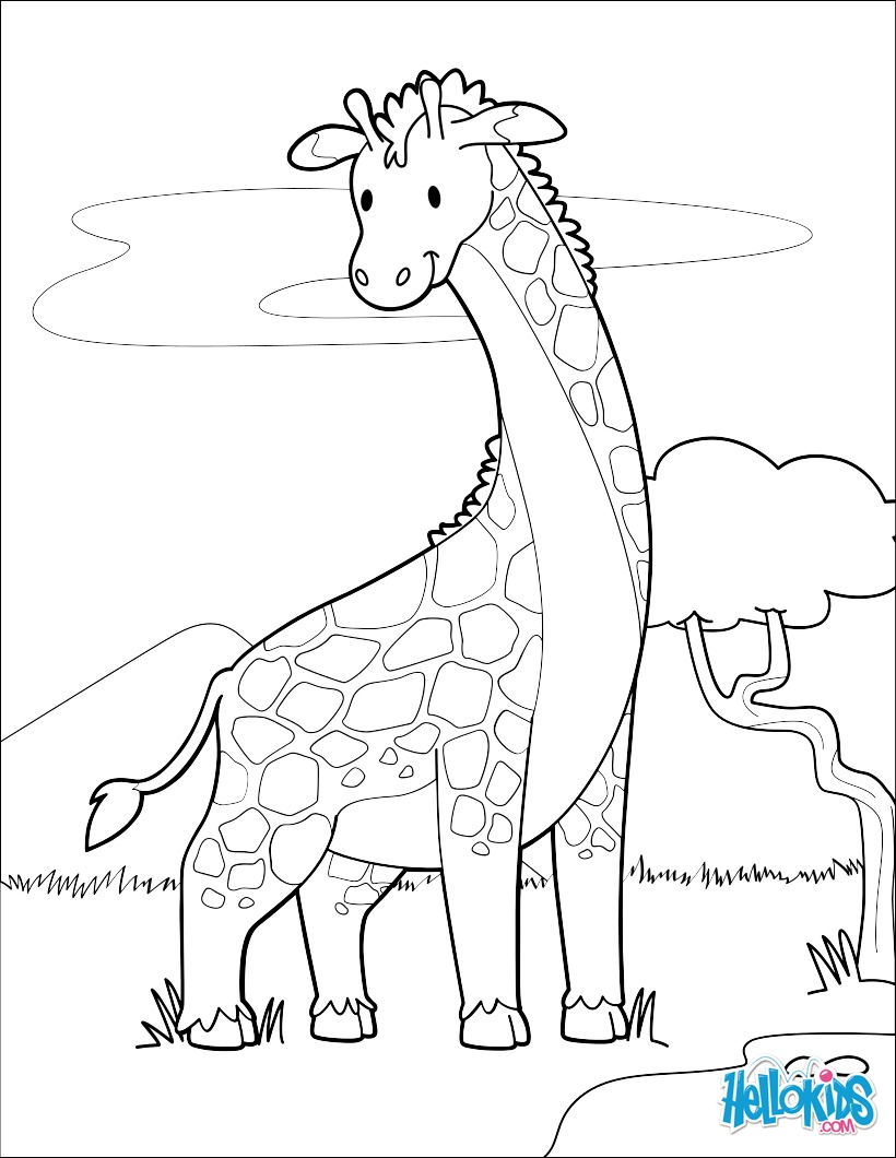 Dibujos para colorear jirafa cerca de un lago  eshellokidscom