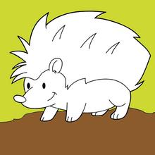Dibujo para colorear : Erizo en el bosque