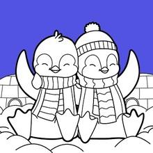 Dibujo para colorear : Valentines Pingüinos