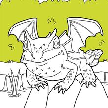 Dibujo para colorear : Dragón del lago
