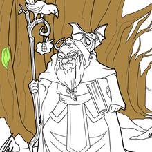 Dibujo para colorear : Domador de animales mago