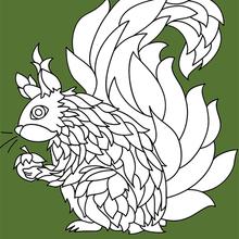 Dibujo para colorear : Ardilla mandala