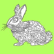 Dibujo para colorear : Conejo