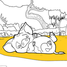 Dibujo para colorear : Vaiana - Pua