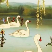 Cuento : Los seis cisnes