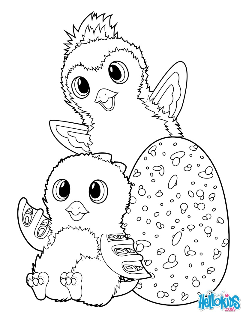 Dibujo para colorear : Hatchimals Draggle and Penguala