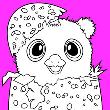 Dibujo para colorear : Hatchimals Owlicorn