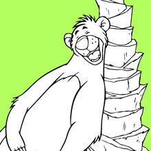 Dibujos El Libro De La Selva Para Colorear 5 Dibujos