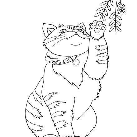 Dibujos GATOS para colorear  54 dibujos de animales para colorear .