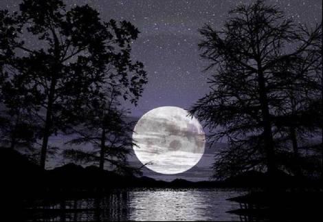 El reflejo de la noche. Luna-de-noche_kle