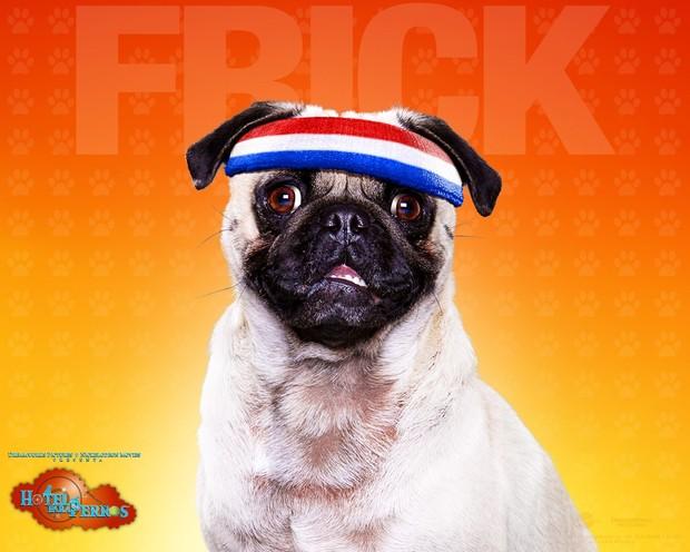 Fondo Hotel para perros: Frick