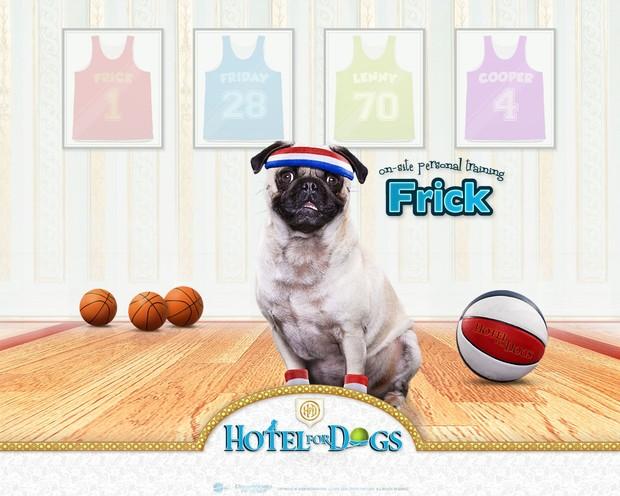 Fondo Hotel para perros: Frick basketball