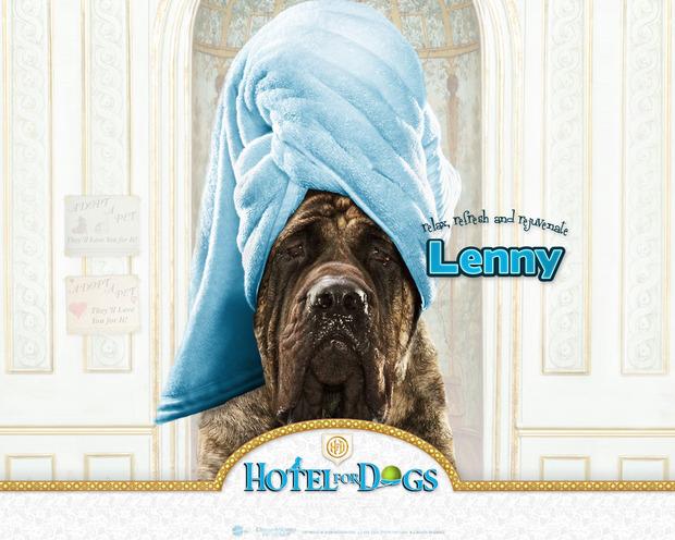 Fondo Hotel para perros: Lenny belleza