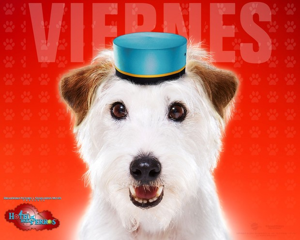 Hotel para perros: Viernes