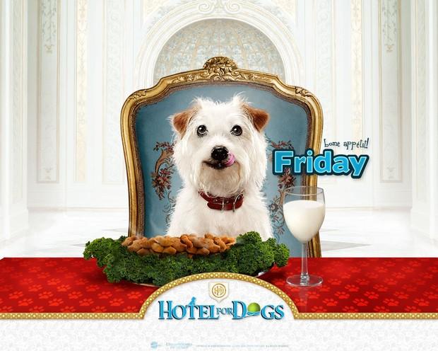 Hotel para perros: Viernes, Friday