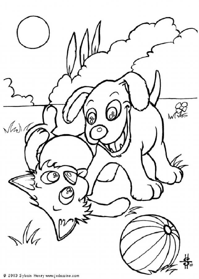 Dog & Cat Coloring Pages