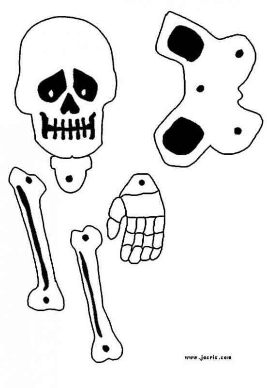 decoration-squelette-2