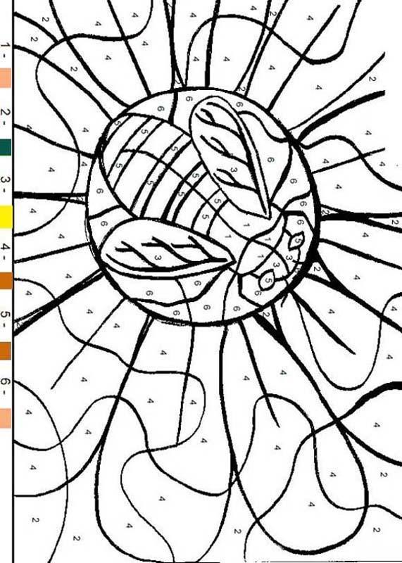Dibujos para colorear color por número mariposa - es.hellokids.com