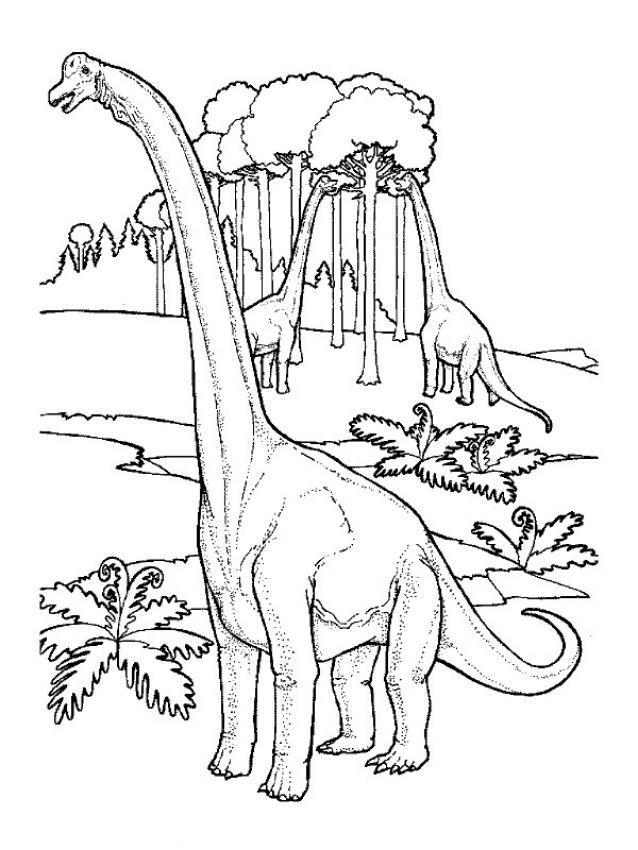 Dibujos para colorear brachiosaurios  eshellokidscom