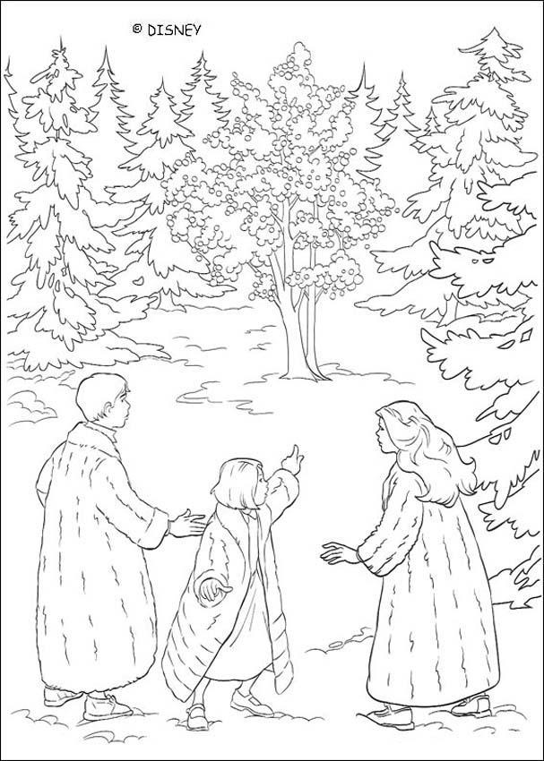 Dibujos para colorear los hermanos pevensie - es.hellokids.com