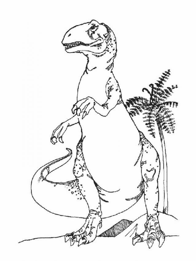 Dibujos para colorear iguanod n for Iguanodon coloring page