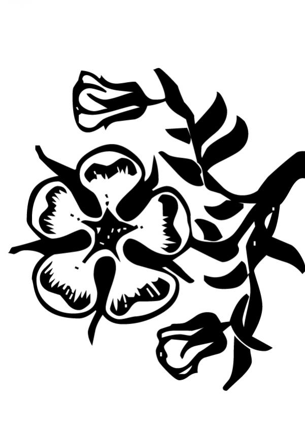 Dibujo para colorear : Flor N°13