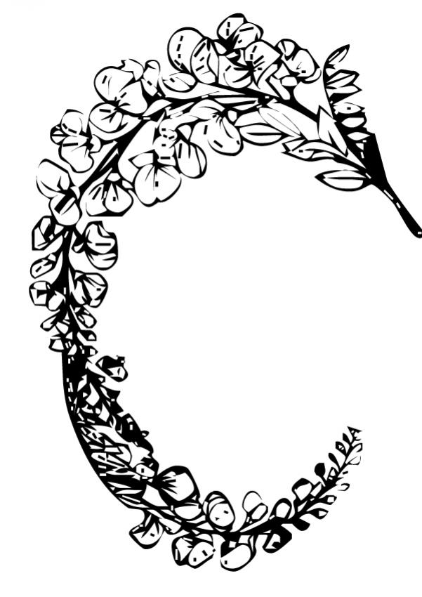 Dibujo para colorear : Flor N°15