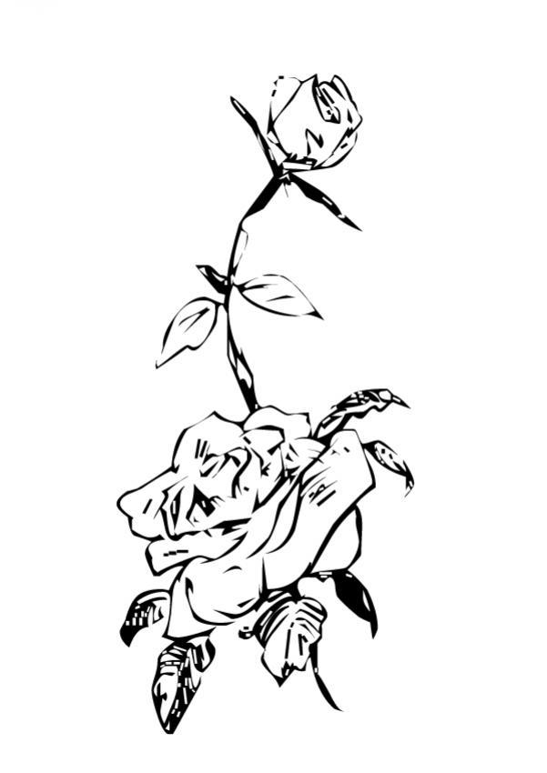 Dibujo para colorear : Flor N°17