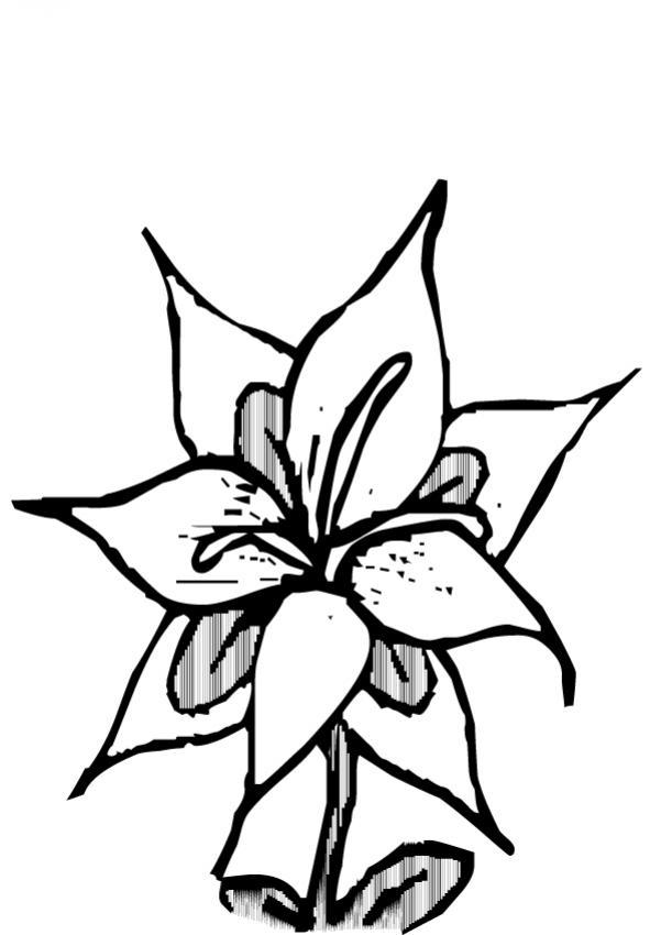 Dibujos para colorear flor n 23 - Dessin des fleurs ...