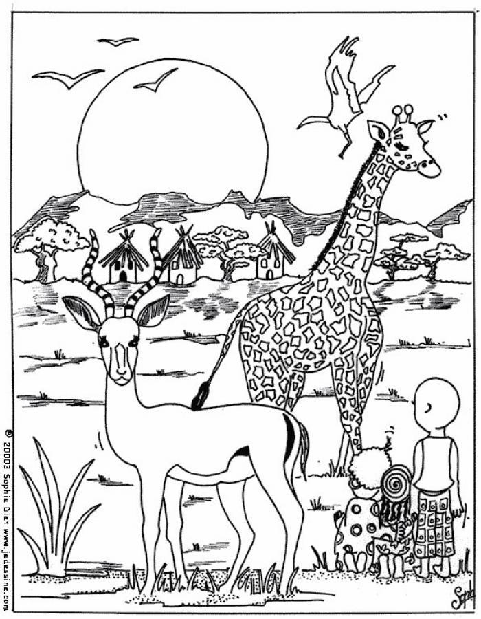 Dibujos ANIMALES DE LA SABANA para colorear, CACHORRO CEBRA para ...