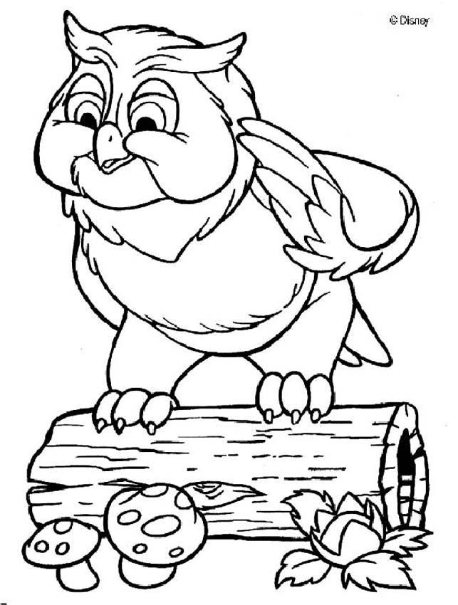 Dibujos para colorear gran búho 1 - es.hellokids.com