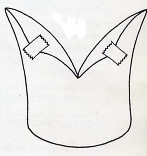la-gorra