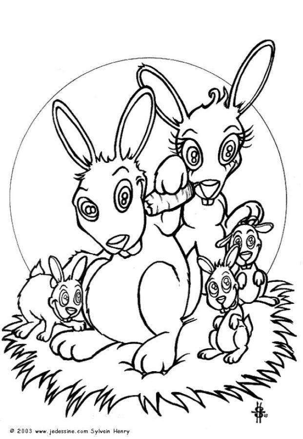 Dibujo para colorear : Conejos