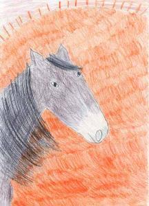 le-cheval-au-soleil