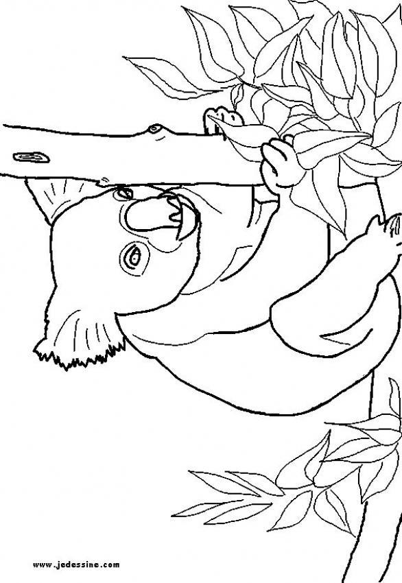 Dibujos para colorear madre canguro y su bebé - es.hellokids.com