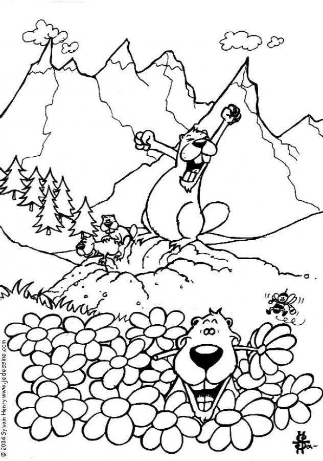 Dibujos para colorear las marmotas - es.hellokids.com