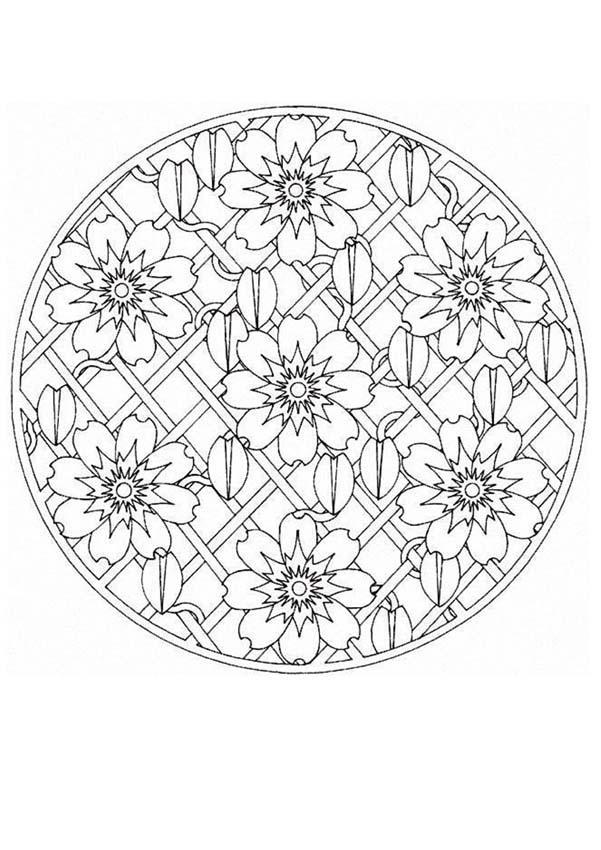 Dibujos para colorear mandala planta trepadora - es.hellokids.com