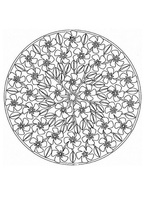 Famoso Flores De Primavera Para Colorear Hojas Componente - Dibujos ...