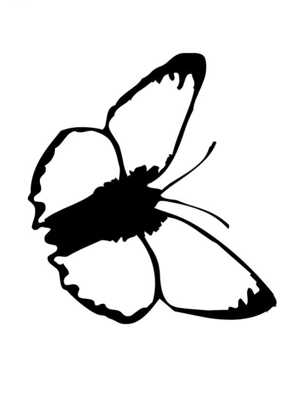 Dibujos para colorear un mariposa azul - es.hellokids.com