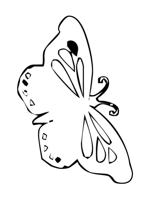 Dibujo para colorear : Mariposa plantilla sencilla