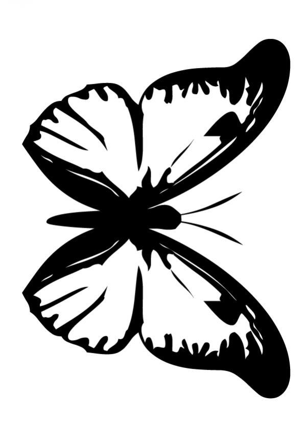 Dibujo para colorear : Mariposa sencilla