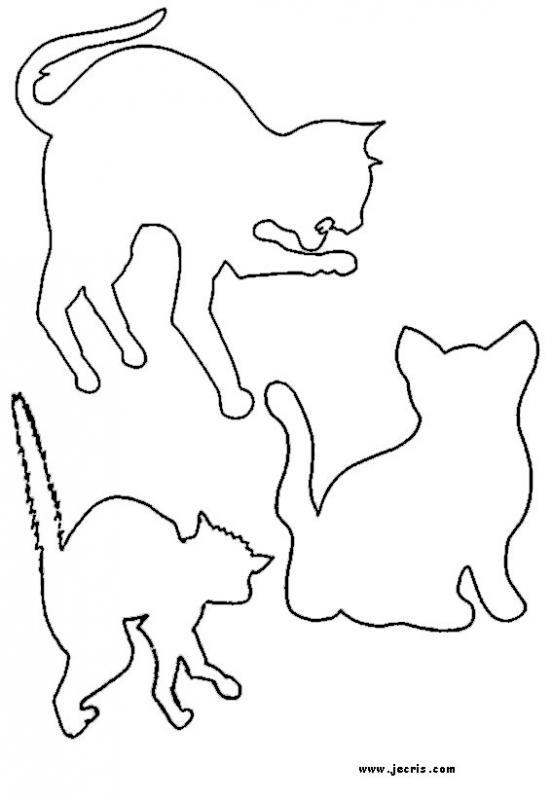 pochoir-chat