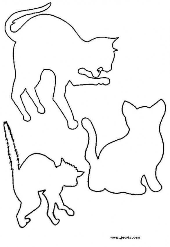 Dibujos GATOS para colorear - 54 dibujos de animales para colorear y ...
