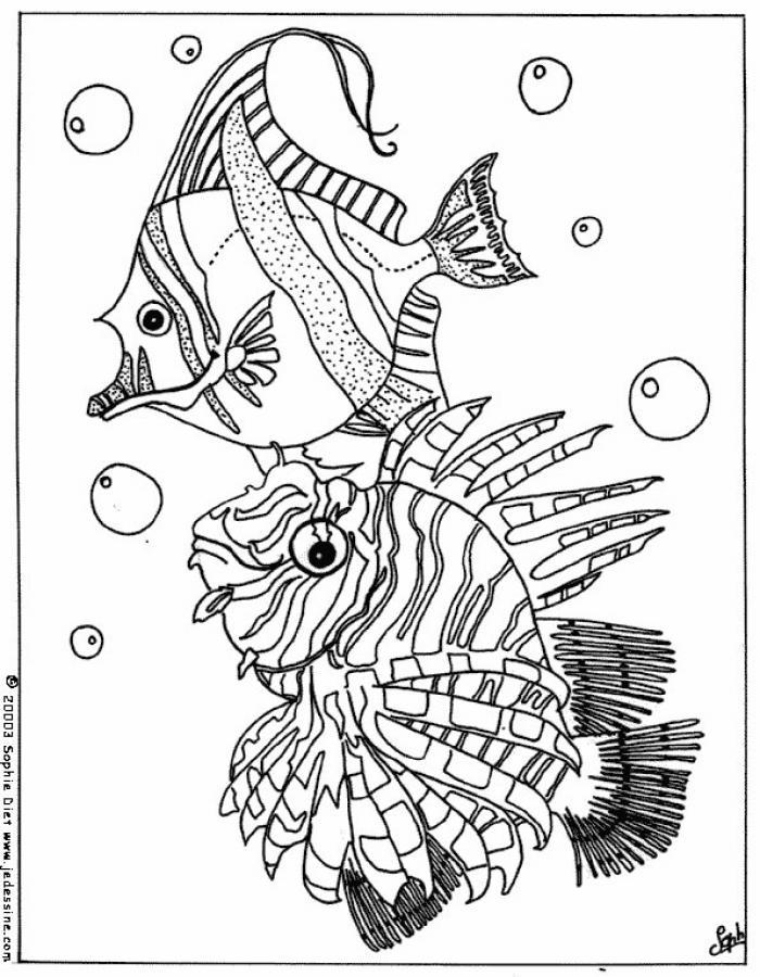 Dibujo para colorear : PECES TROPICALES